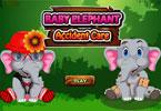 baby elephant cura incidente