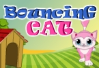 Bouncing Cat