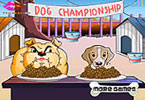 Dog Championship