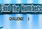 Find Numbers Challenge 5