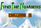 Find the Numbers - 13