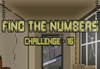 Find the Numbers - 16
