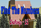 Find the Numbers - 25