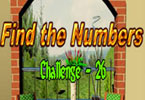 Find the Numbers - 26