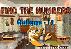 Find the Numbers Challenge - 12
