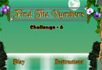 Find the Numbers Challenge - 6