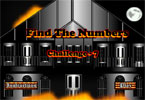 Find the Numbers Challenge - 7
