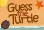 Guess the Turtle
