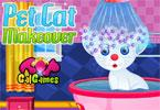 Pet Cat Makeover